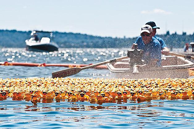 Great Puget Sound Duck Dash