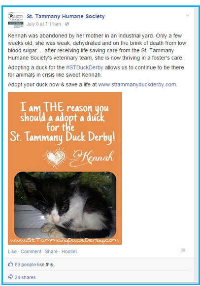 rubber duck race promotions for all year showing how duck adoption helped