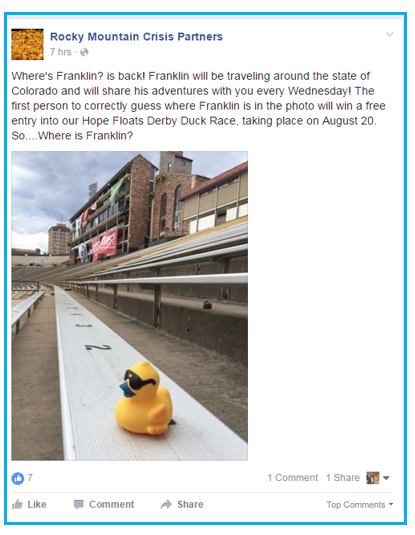duck race promotions for all year where's franklin promotion