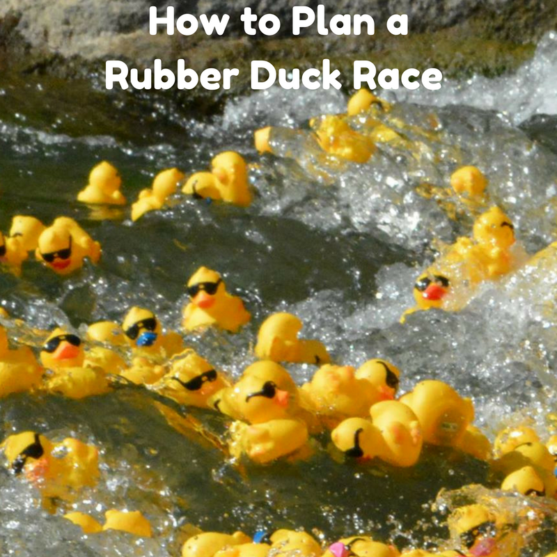 How to plan a rubber duck race
