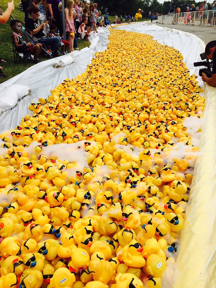 FAQ's about GAME's rubber duck race fundraiser- man made course