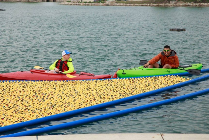 five duck races to kick off May