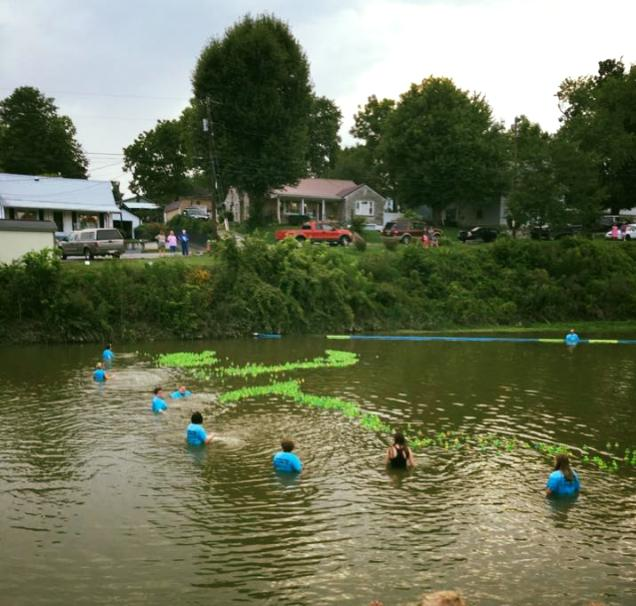 Perryville turtle race
