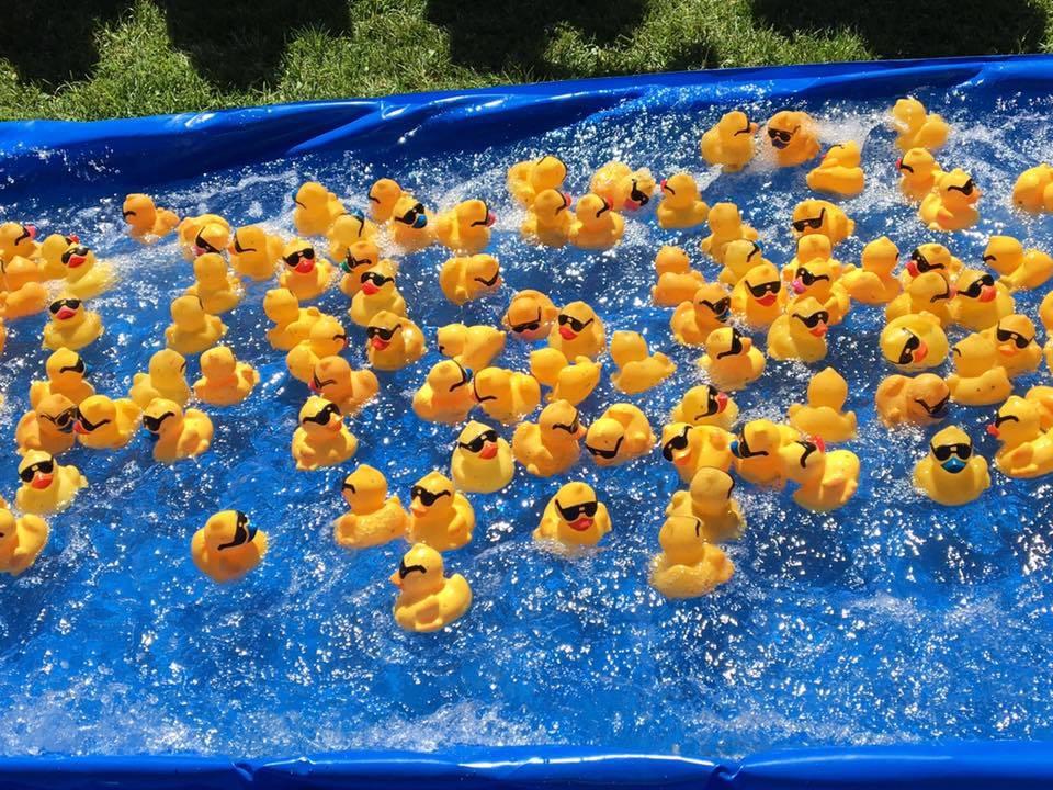 Rubber duck race, duck derby, duck race