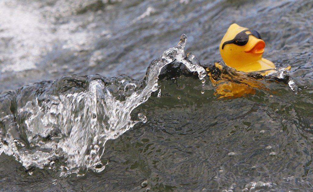 Duck Derby, Advocates For Children