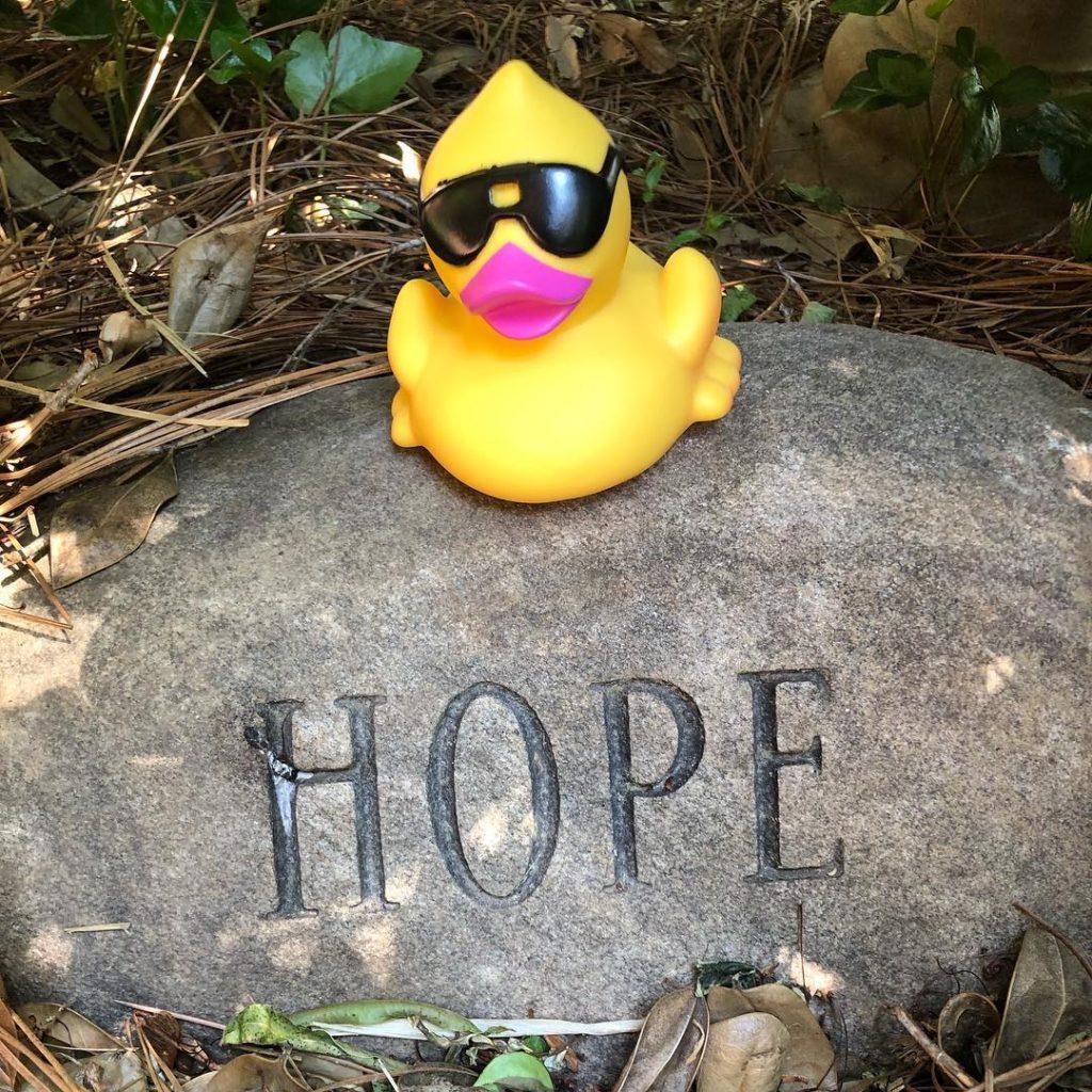 Hope Floats Duck Race, Duck Race, KinderMourn, Duck Race, Charlotte
