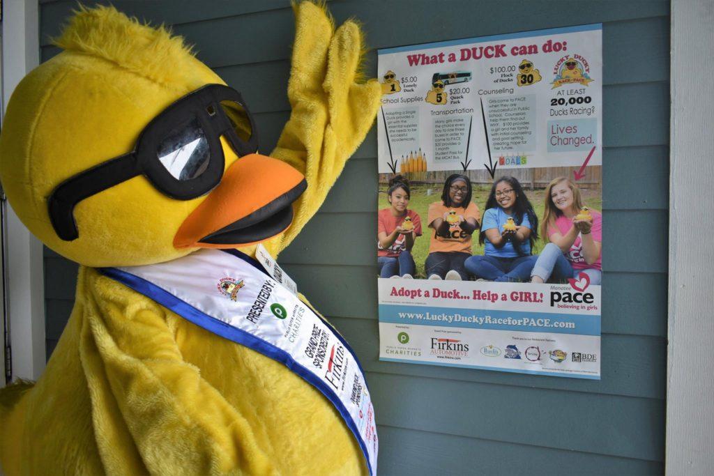 Luck Ducky Race For Pace, rubber duck race, duck derby