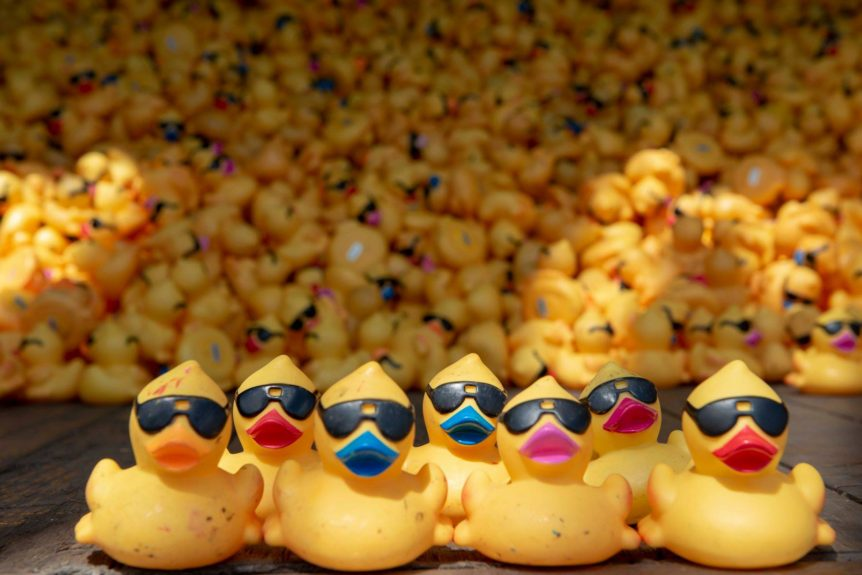 Freestore Foodbank Rubber Duck Regatta