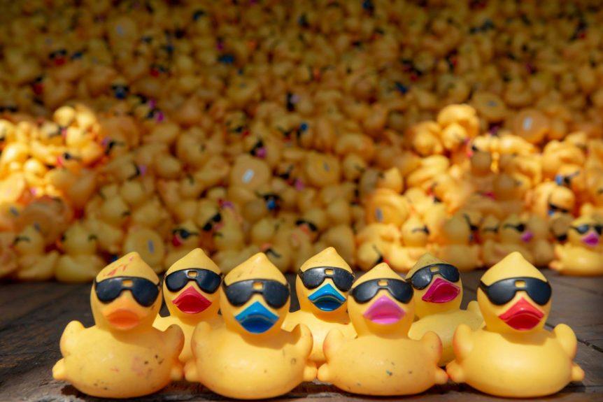 Freestore Foodbank Rubber Duck Regatta